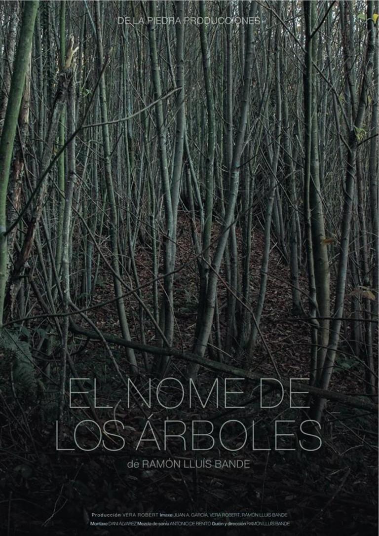 EL NOME DE LOS ÁRBOLES